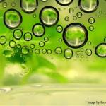 Biofuels-1
